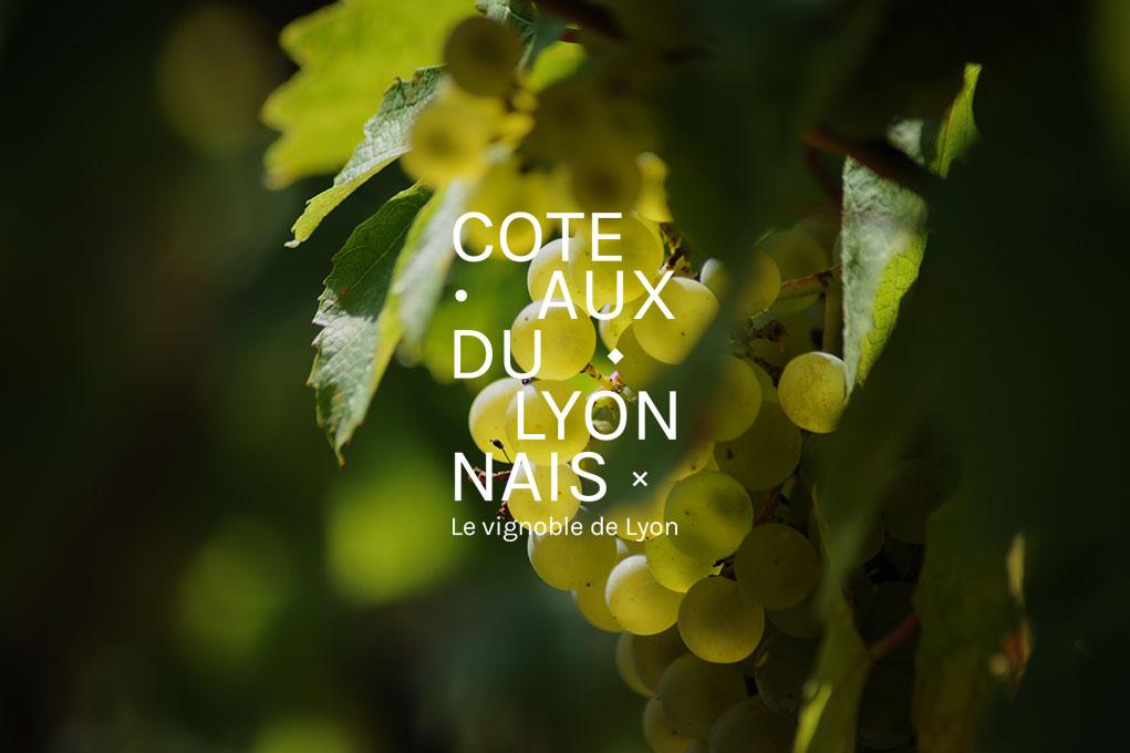 coteaux-du-lyonnais2