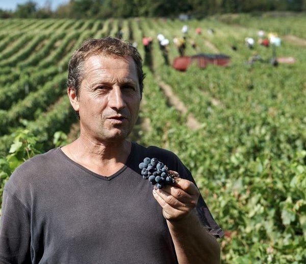 Portrait Franck Decrenisse
